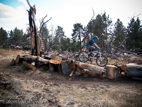 More trail side log ride action.