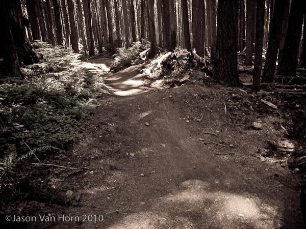 half nelson trail