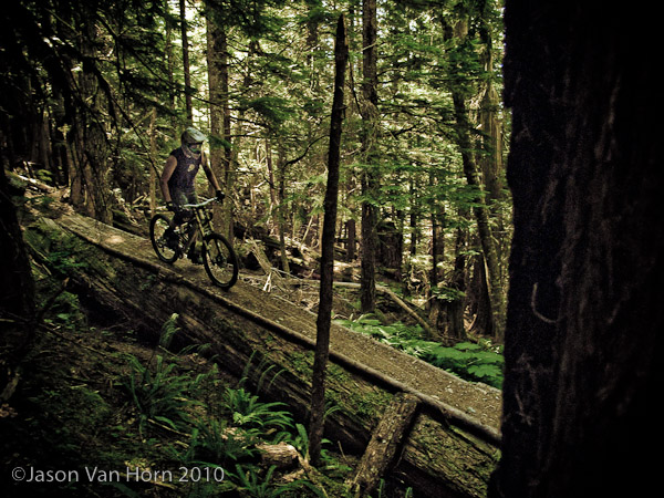 Our host Dave, on a tree ride section of trail.