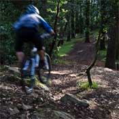 Thumbnail image for Night riding at Joaquin Miller Park, Oakland, CA