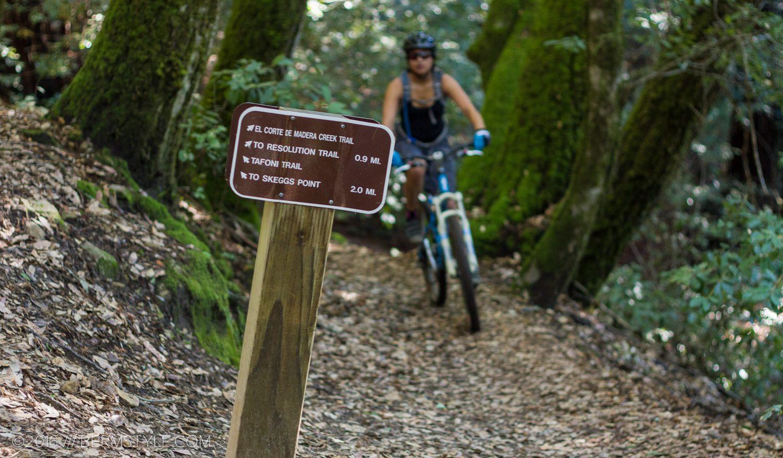 Skegg's Point – Woodside, CA