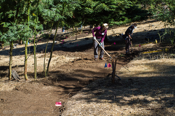 This new section of trail replaces a straight line section with a twisty arc and a more gradual grade.