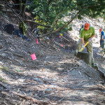 20120610_bishops_walk_trail_work-7966