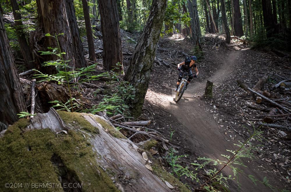 Demo flow trail, segment 3
