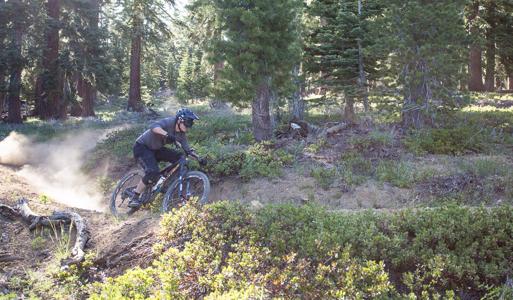 A sweeping turn on the Tahoe Trail.