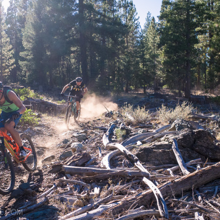 image for Destination Downieville: the Mills Peak Trail