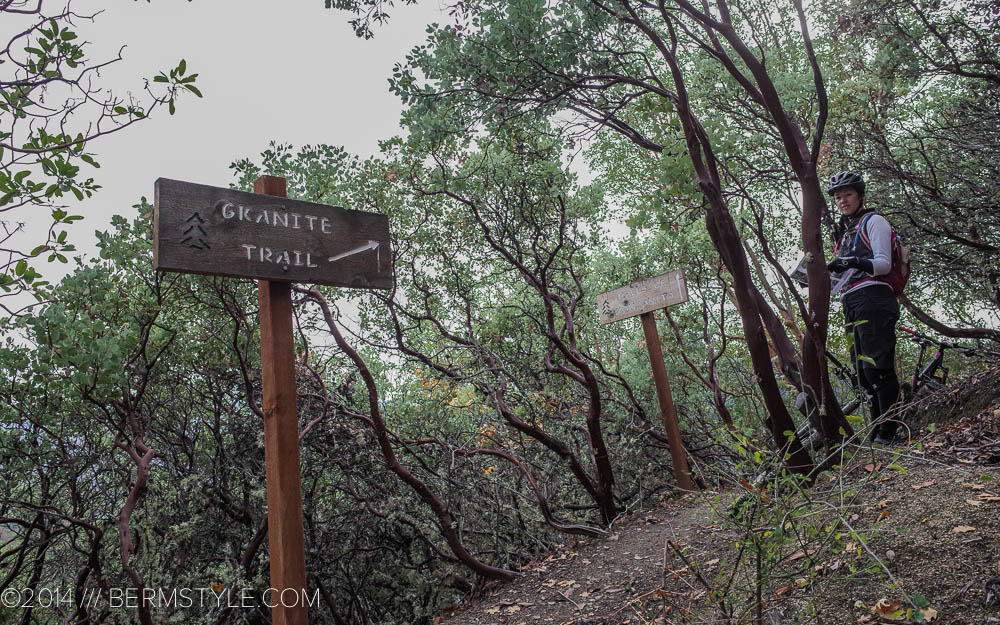 Entering the Halls of Manzanita Forest