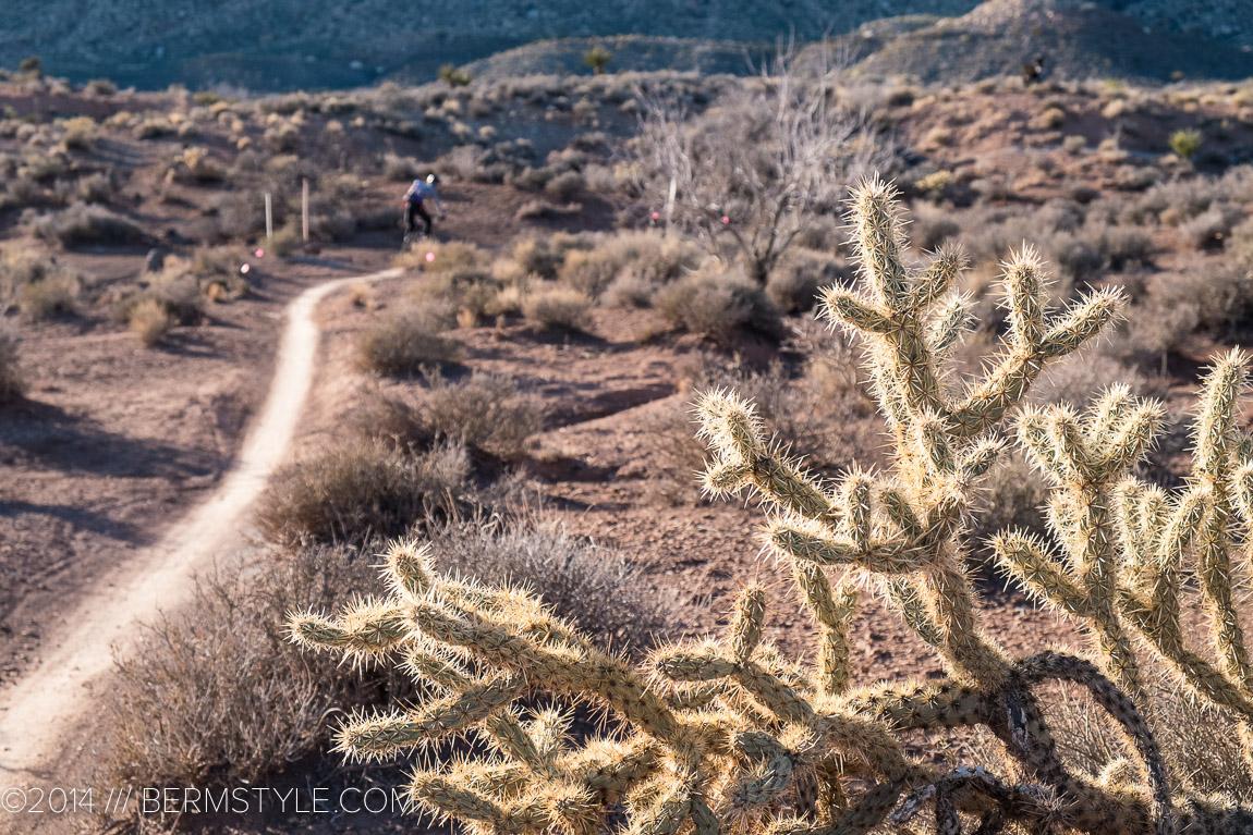 mountain bike trail in Blue Diamond
