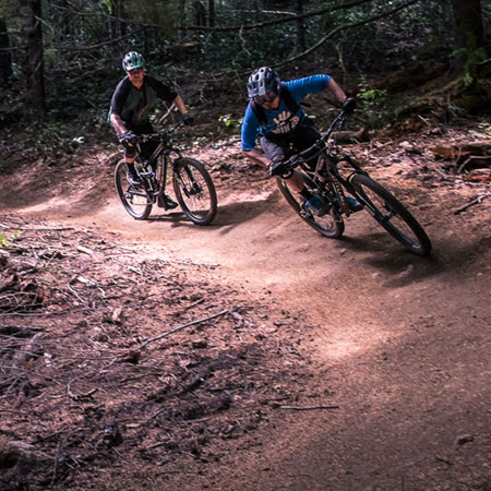 Oregon MTB Destination: Alsea Falls Trail System