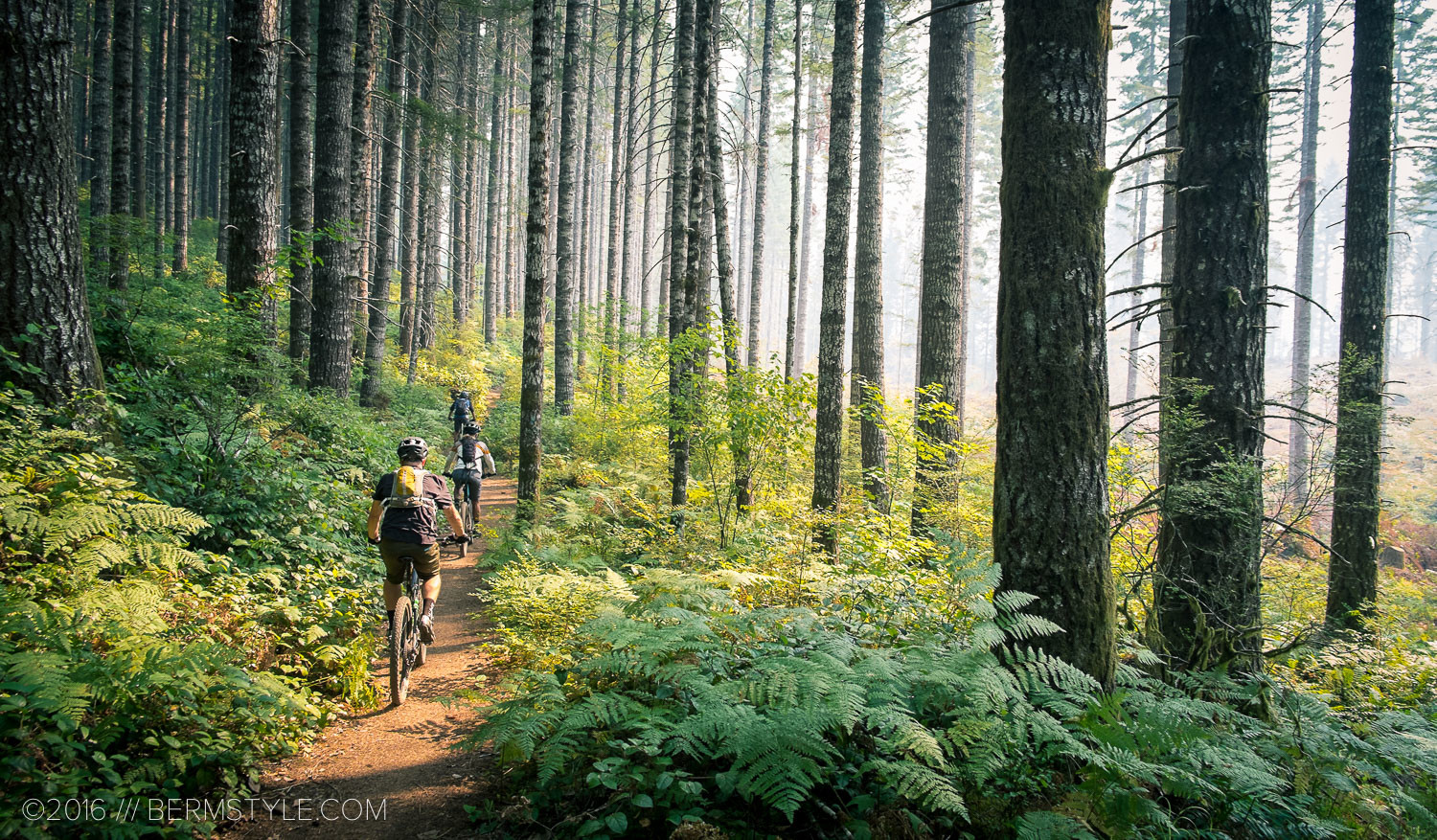 Portland Area Trails: The Browns Camp Loop