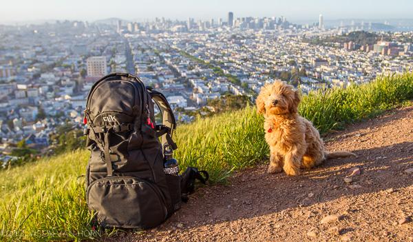 Review: Clik Elite Venture 30 Camera Backpack