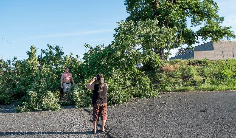 fallen-tree-pdx-3656