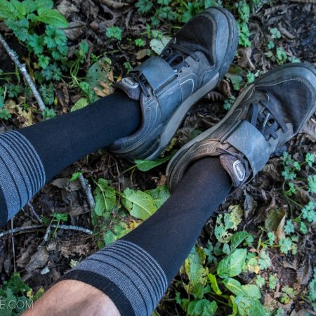 image for Review: Point6 Merino Wool Socks