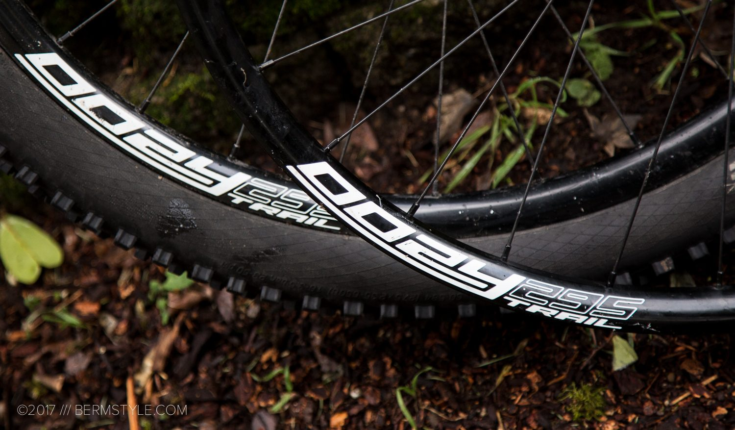 Long Term Tested: Spank Oozy Trail 295 Wheelset