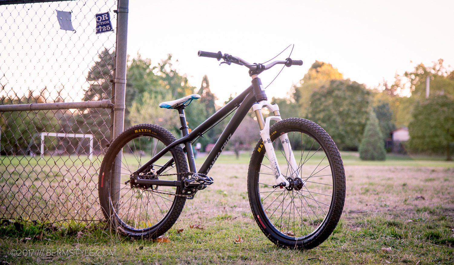 Santa Cruz Jackal Dirt Jumper Custom Build