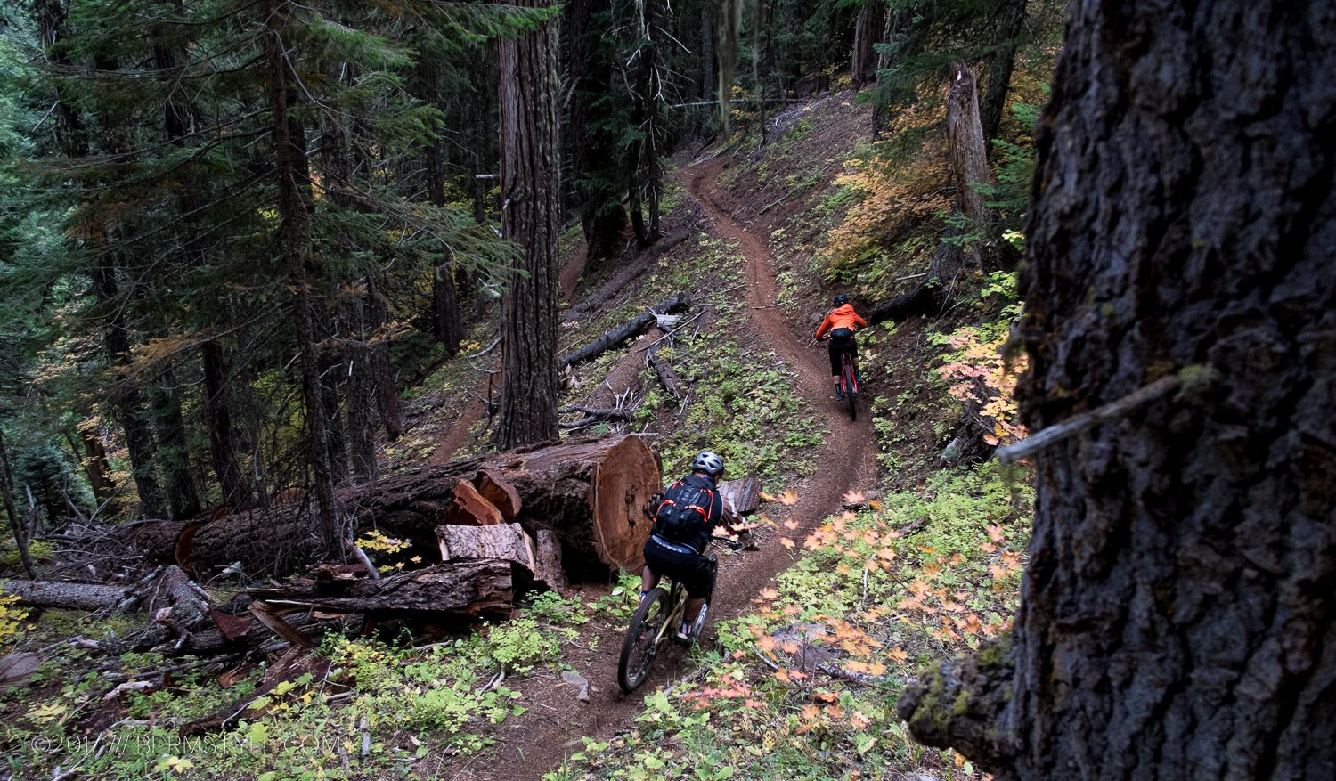 Oakridge, Oregon: the Moon Point Trail