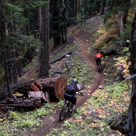image for Oakridge, Oregon: the Moon Point Trail
