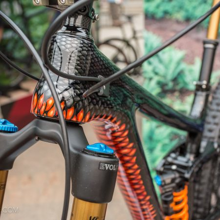 image for Bryn Atkinson's Custom Painted Norco Range Snake Bike