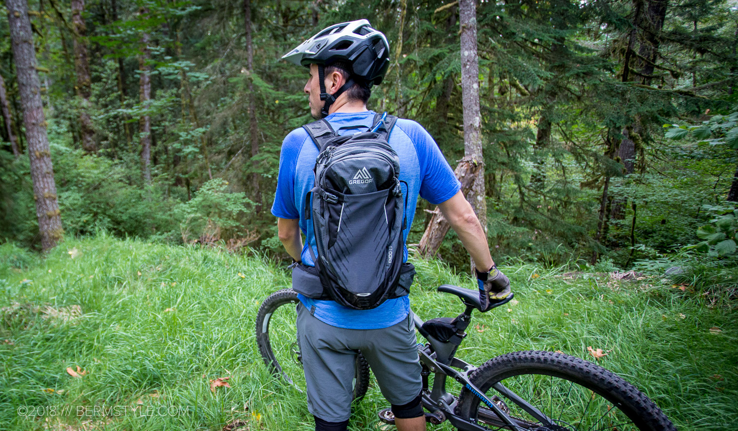 Gregory Endo Hydration Pack