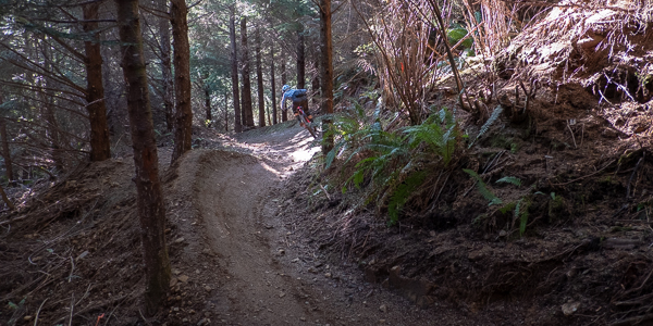 Riding the Klootchy Creek Trails: Mo Flow feauted image