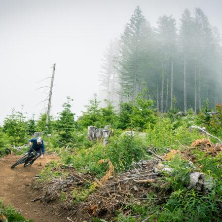 image for 2019 Highlights: Sixth Sense Trail Opening at Cold Creek